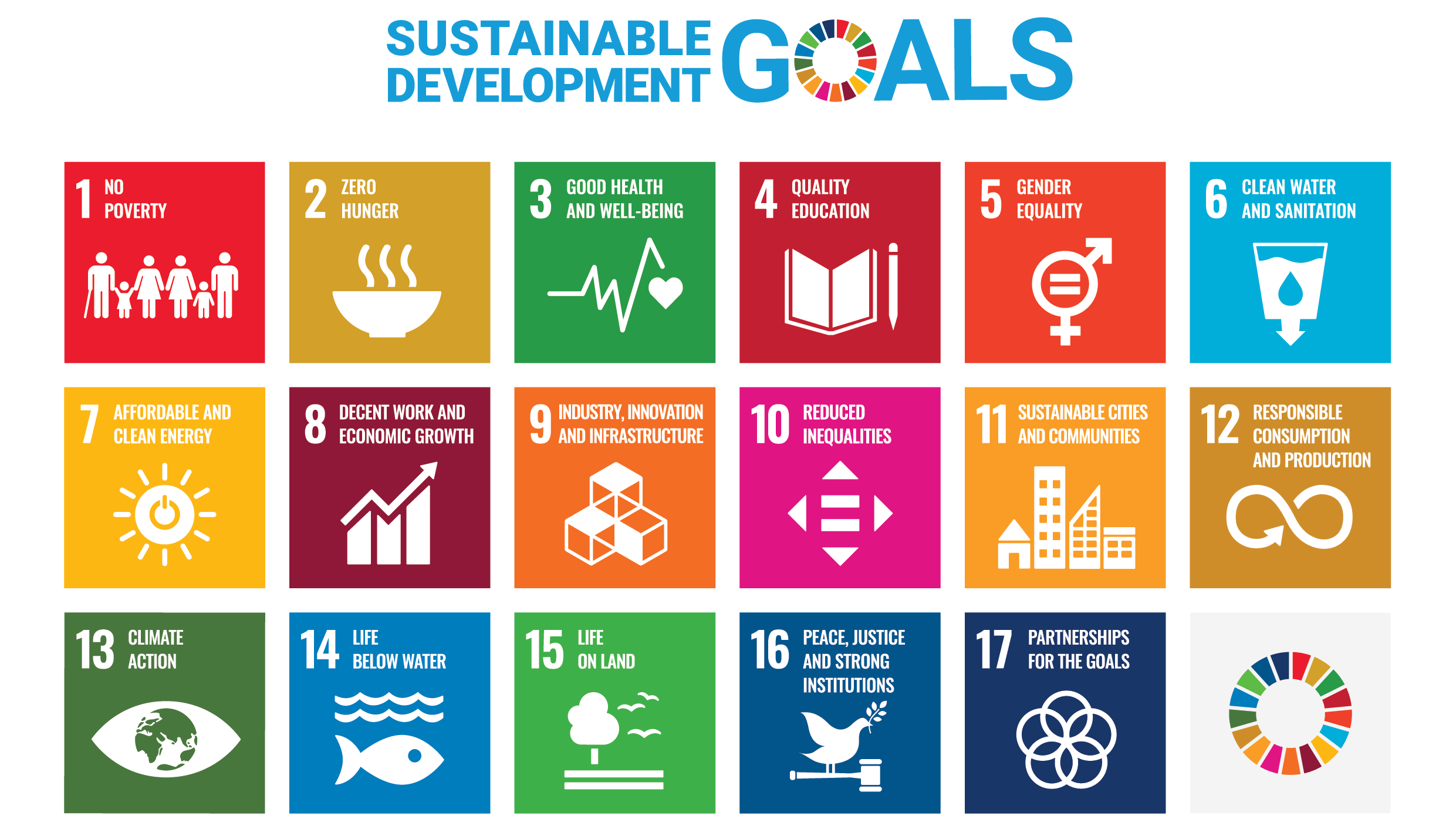 17 SDG crowd17